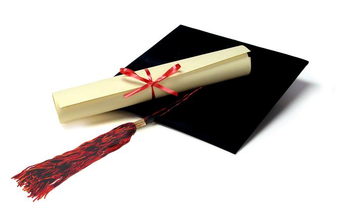 Pisanje diplomskih povzetkov